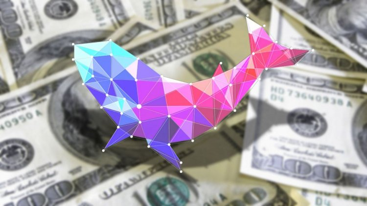 Polywhale Finance произвела фурор в сети Polygon